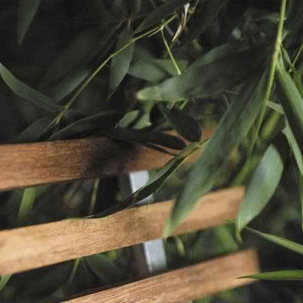 Woven bamboo batten for outdoor use